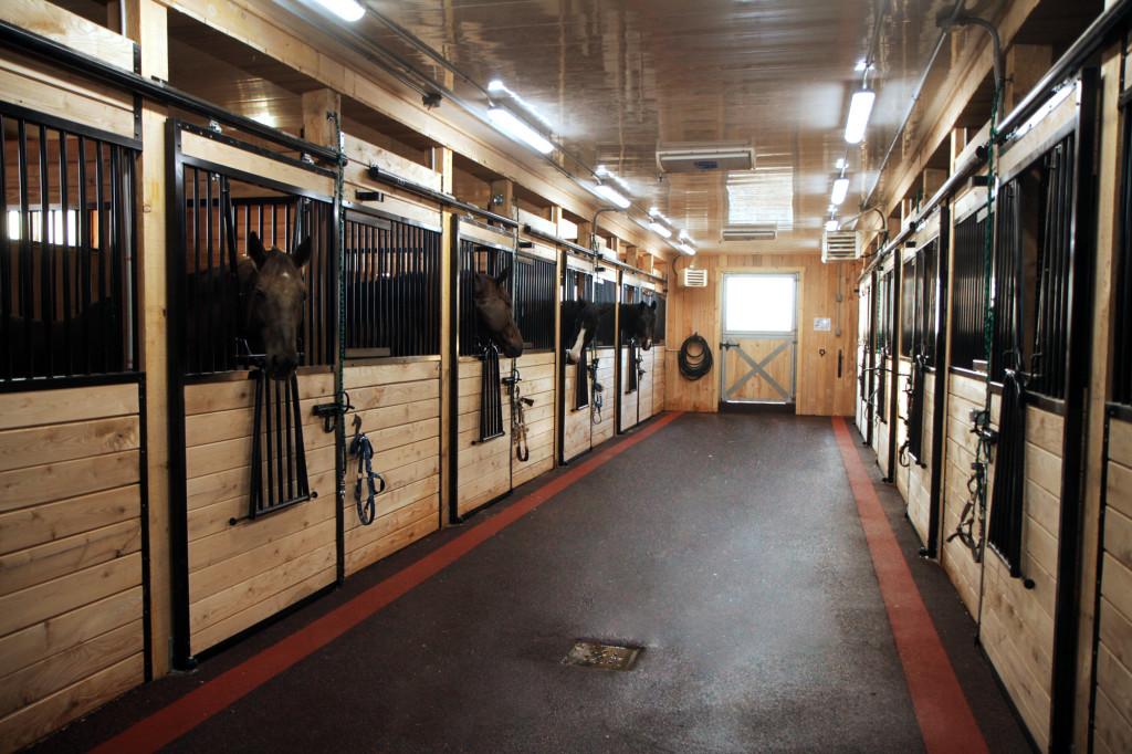 Écurie entièrement rénovée, pension et cours d'équitation en Montérégie.