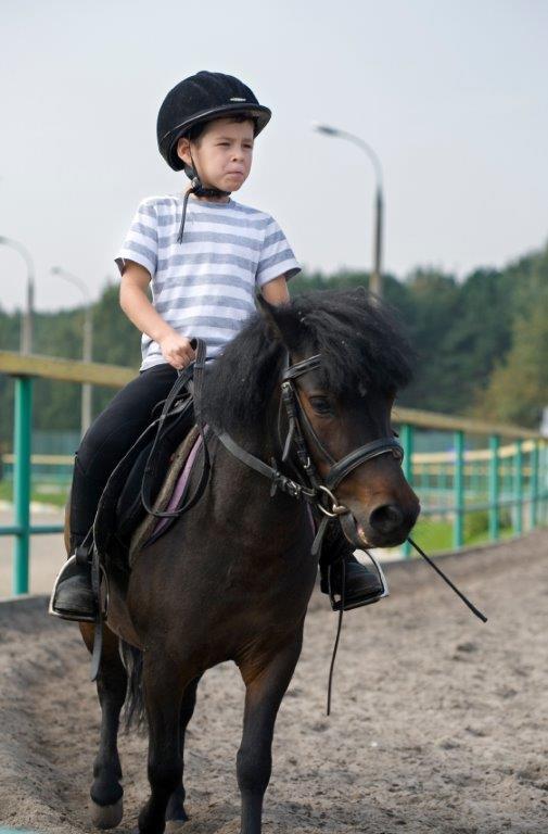 Cours d'équitation selle anglaise en Montérégie.